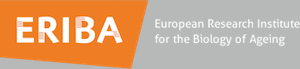 Logo ERIBA - European Research Institute for the Biology of Ageing